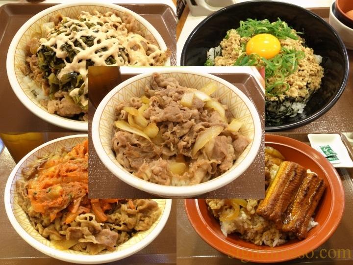 【まとめ】すき家の丼メニューの画像を淡々と貼っていくページ